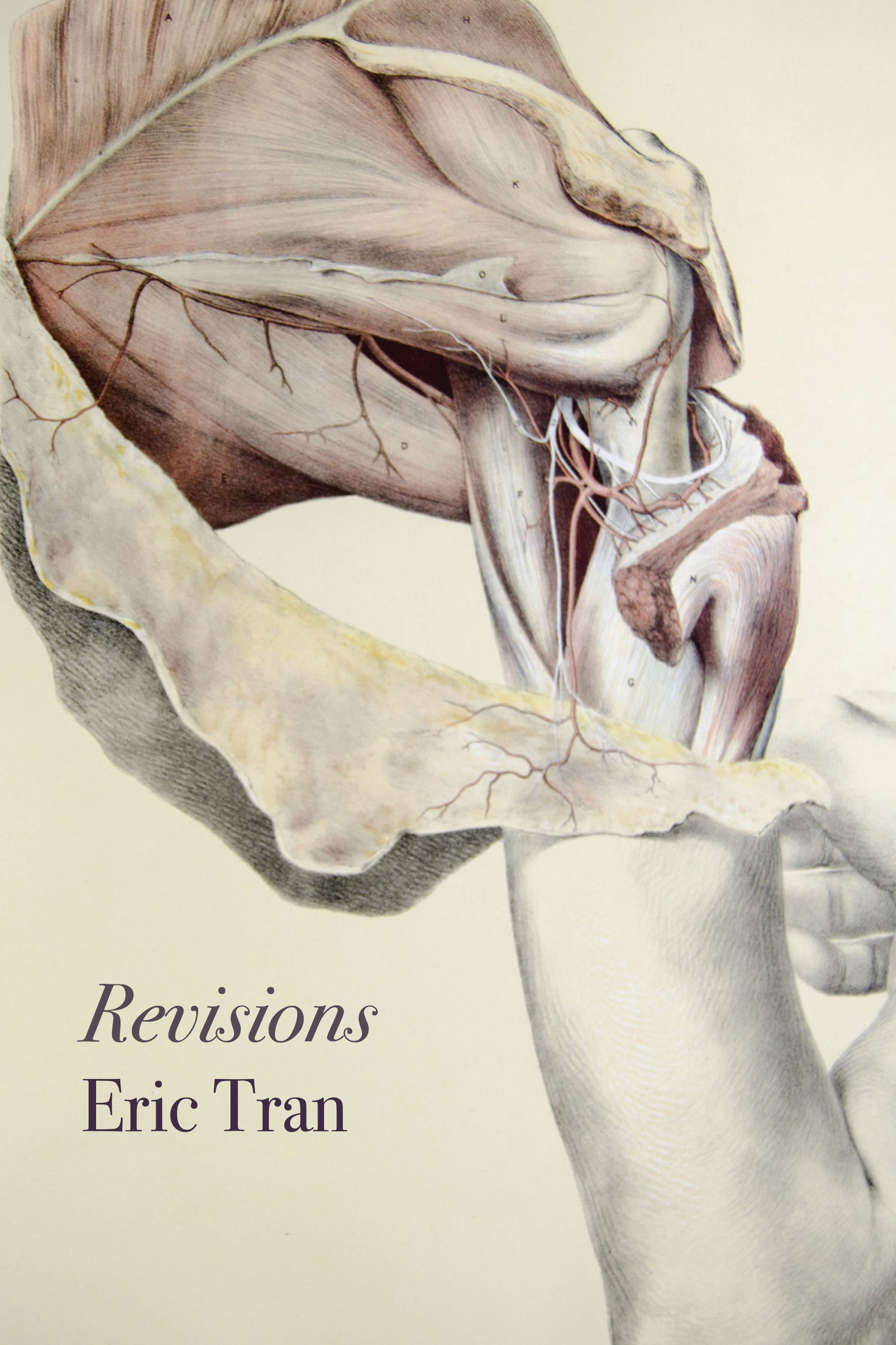 Image of Revisions by Eric Tran