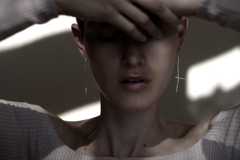 Image of Plus earrings