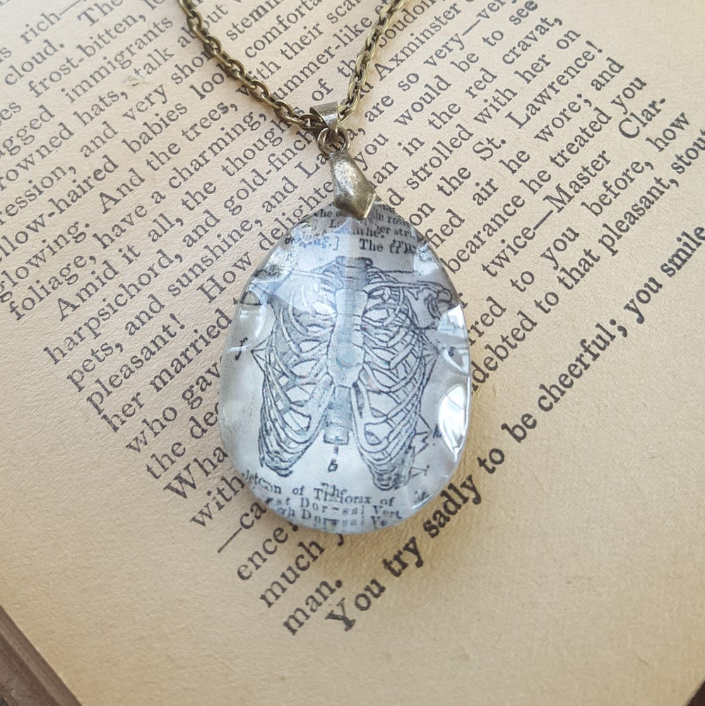 Image of Rib of Man Thorax Anatomical Print Pendant Necklace