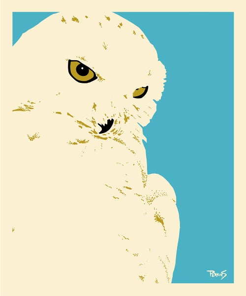 Image of Snowy Owl art print