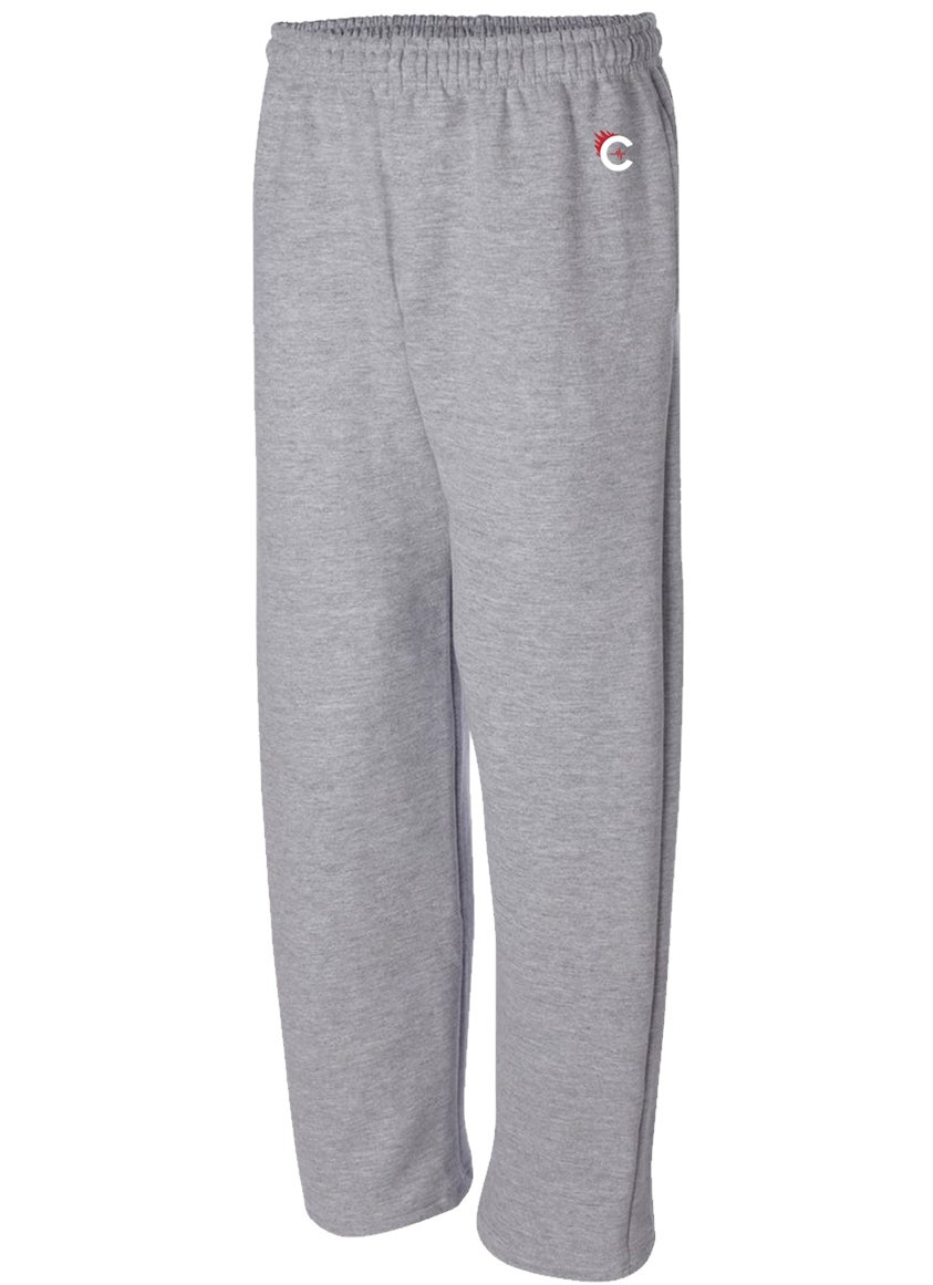Image of CULTURE FLEE JOGGERS - GREY - W