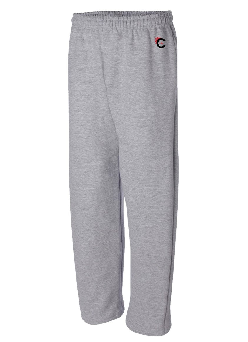 Image of CULTURE FLEE JOGGERS - GREY - B