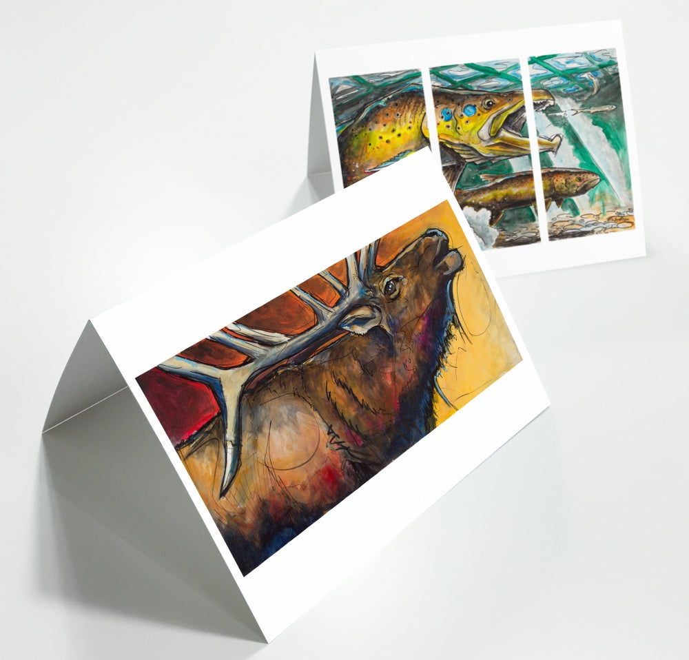 Image of Greeting Cards 5-Pack