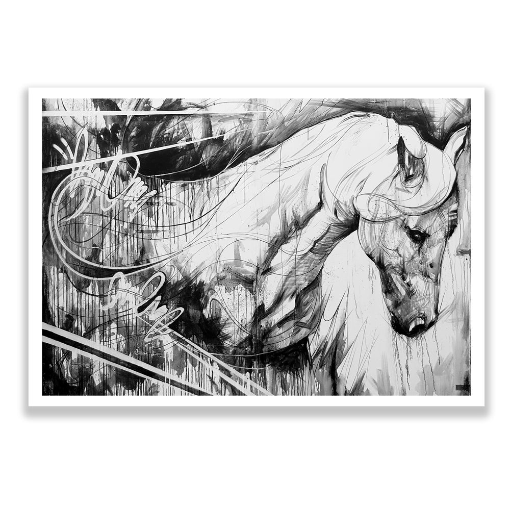 Image of Horse (Black & White) OPEN EDITION PRINT - FREE WORLDWIDE SHIPPING!!!