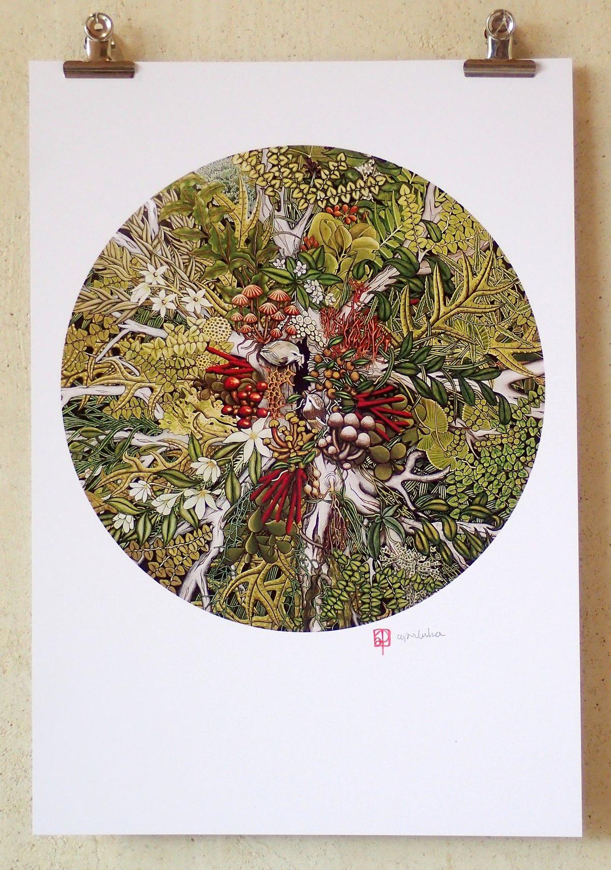 'Canopy Ecosystem' A3 Print