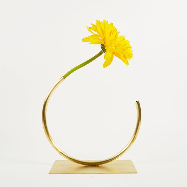 Image of Vase 501 - Edging Over Vase