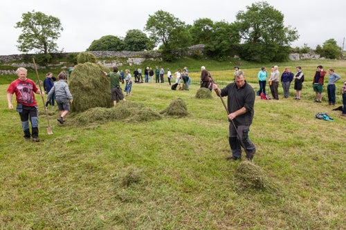 Image of Northern Scythe Championships - Sunday 15th July