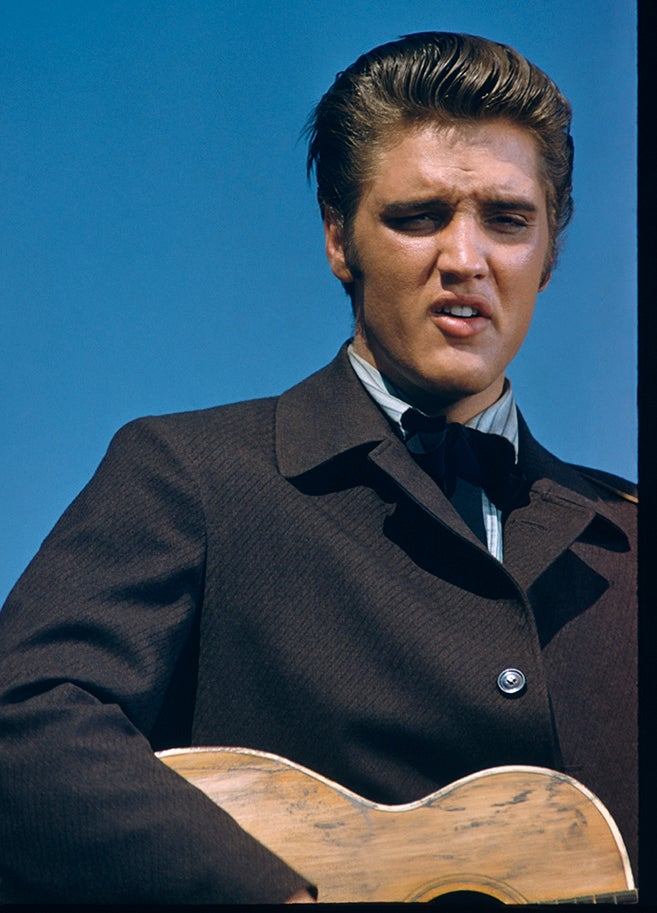 Image of Elvis LIVES!