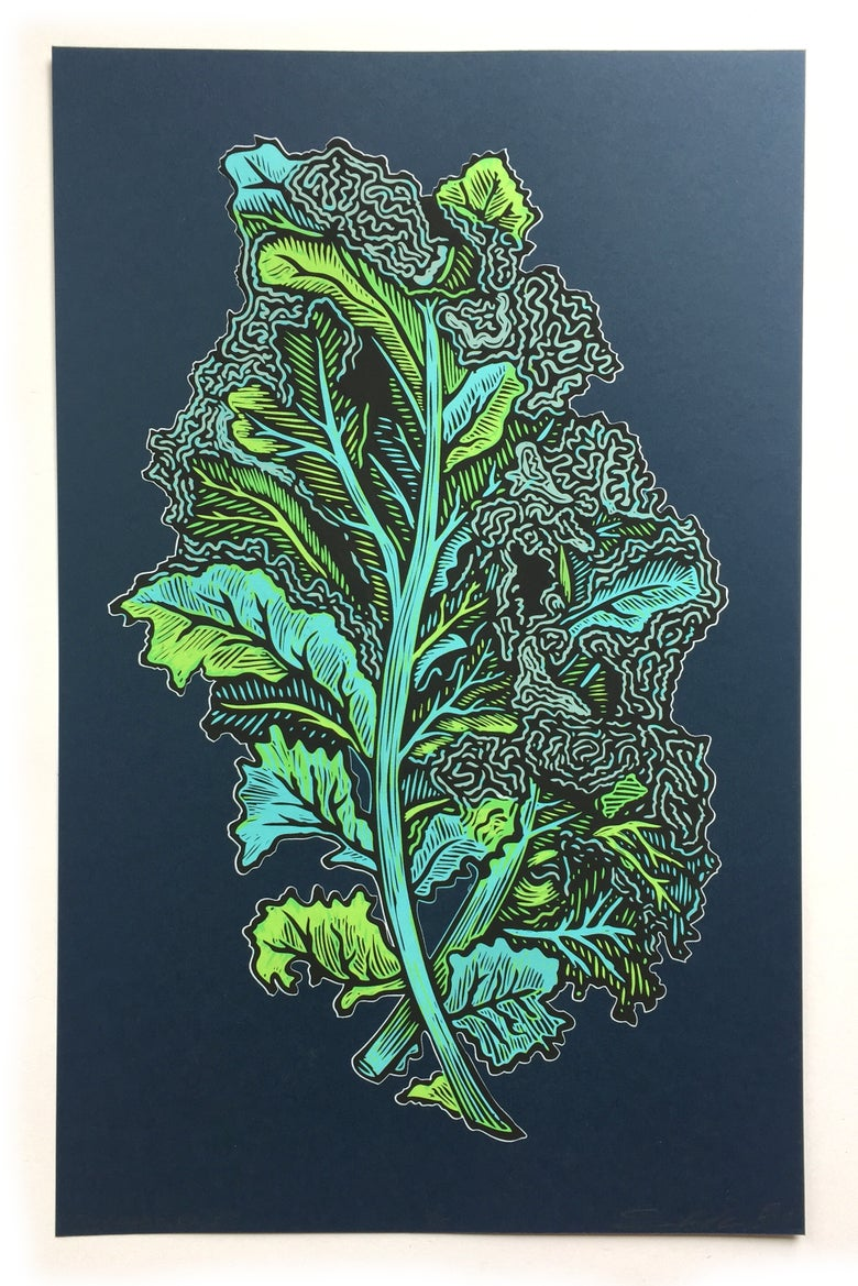 Image of Colorado Kale