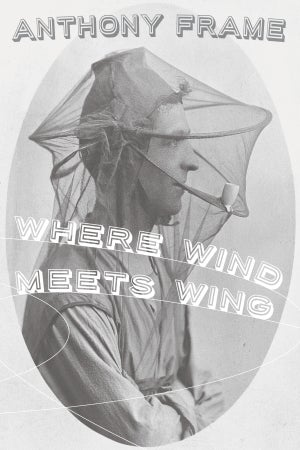 Image of Where Wind Meets Wing by Anthony Frame