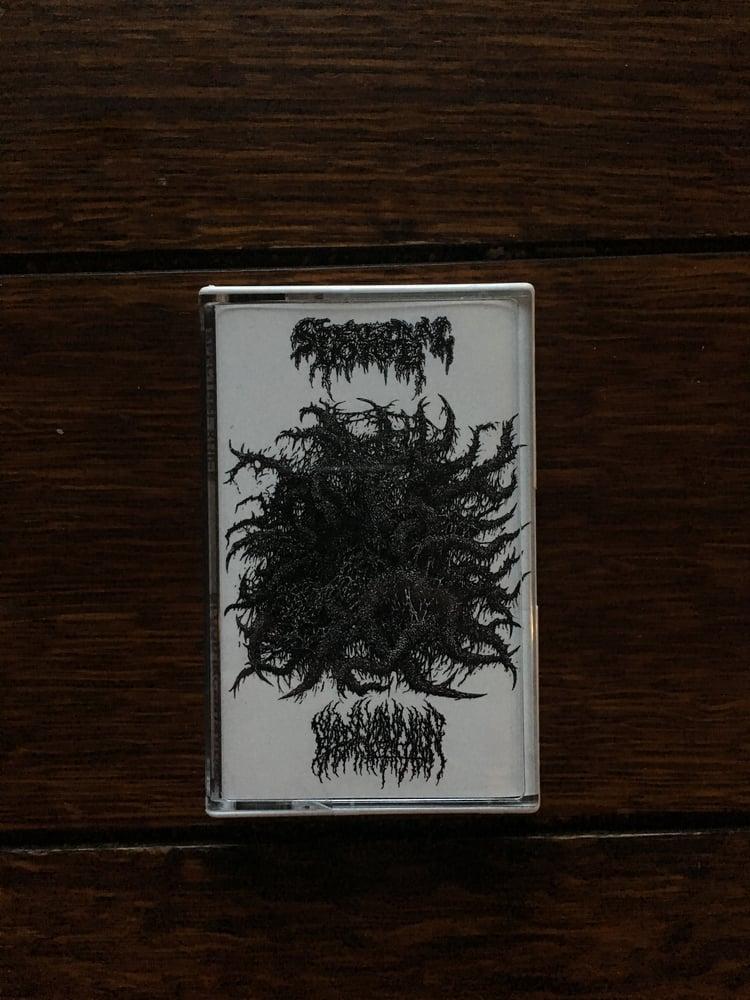 Image of blood incantation split cassette