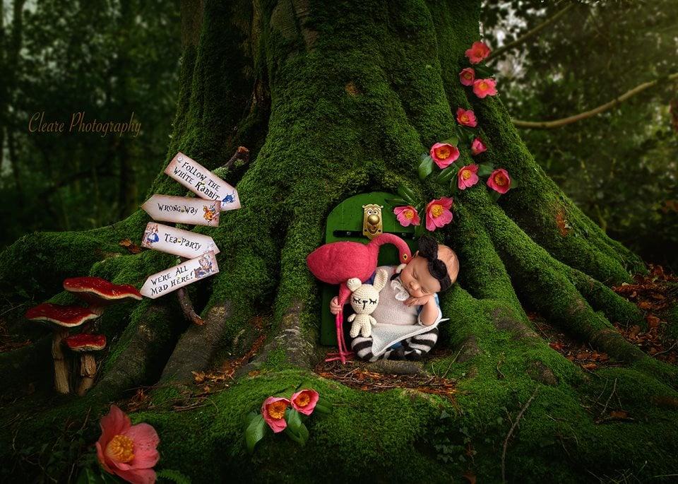 Image of **NEW** Alice In Wonderland Jammy Set
