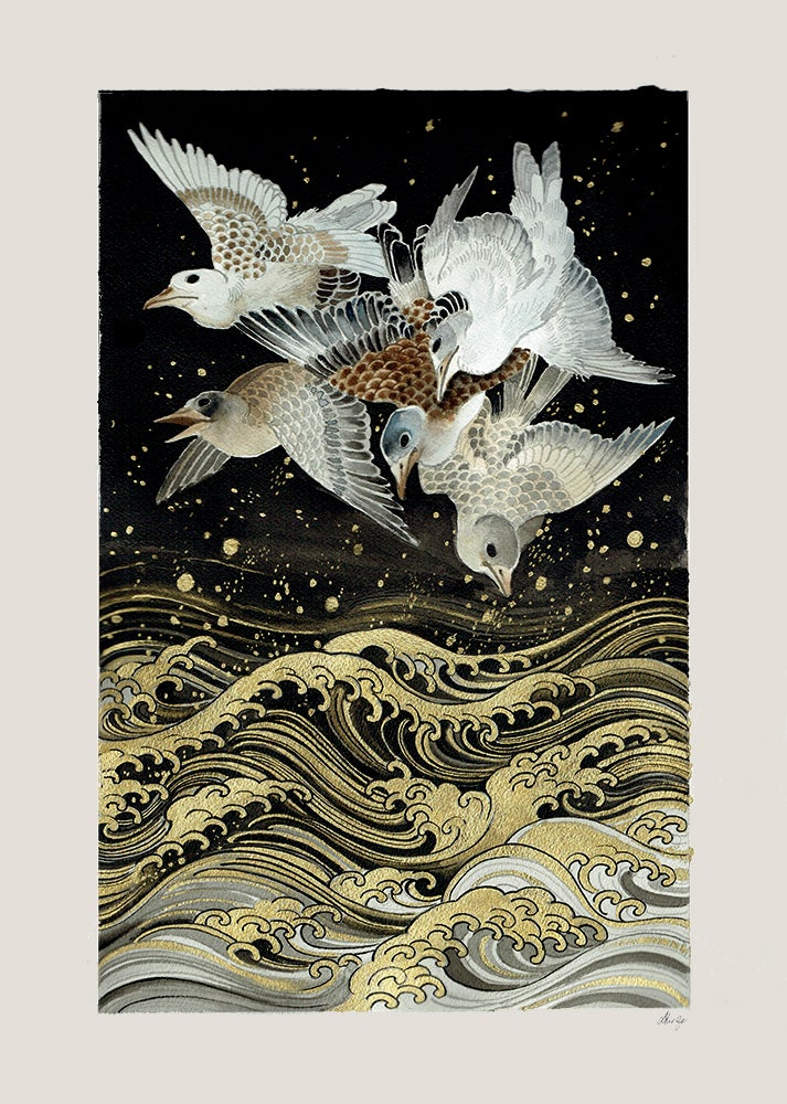 Image of Birds over water