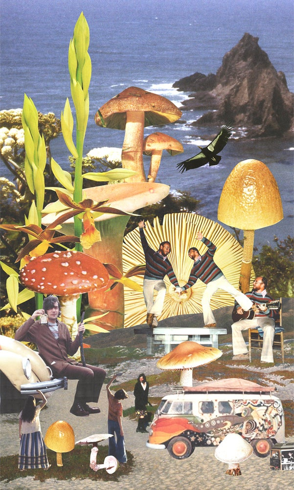Image of The Family Acid Mushroom Beach Poster
