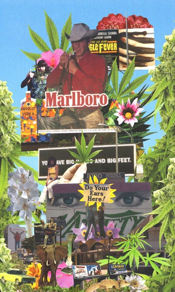 Image of The Family Acid Marijuana Hollywood Poster