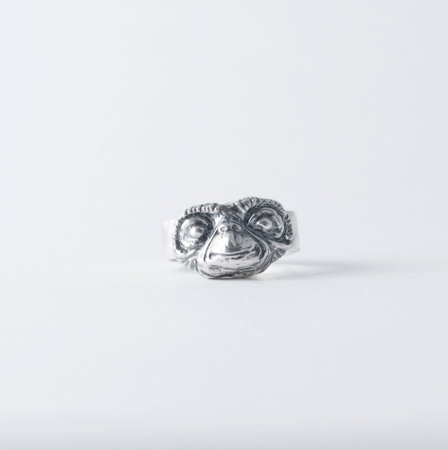 Image of SILVER RING / ANILLO EXTRATERRESTRE Plata
