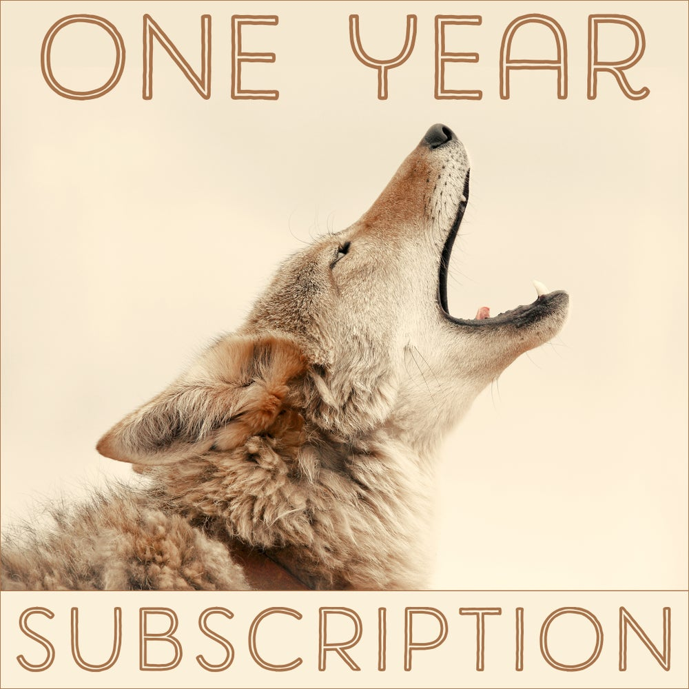 Image of One Year of the Daily Coyote