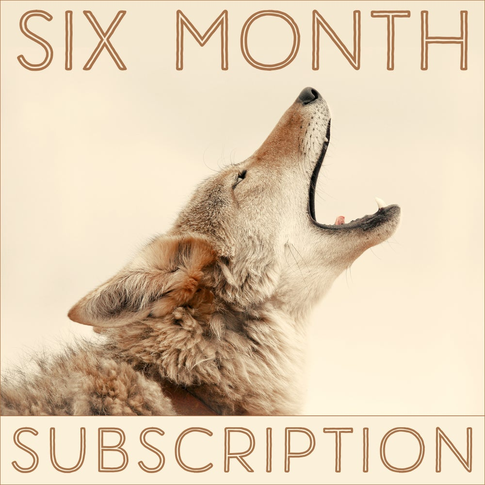 Image of Six Months of the Daily Coyote