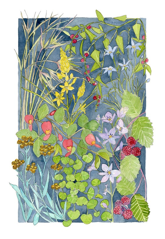 Image of Snakegrass - Limited Edition Print