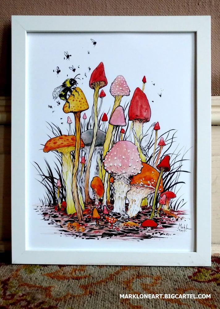 Image of mushrooms 11x14 in print