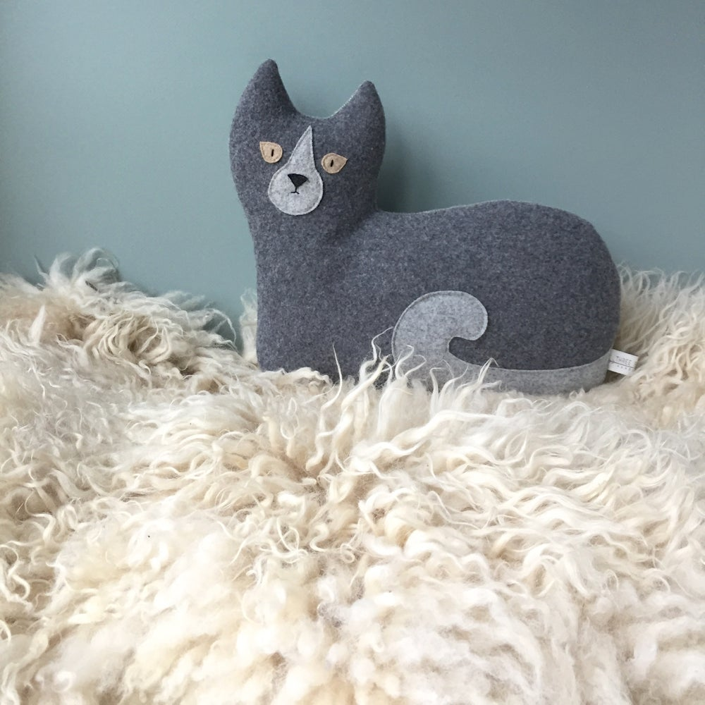 Image of the Cat