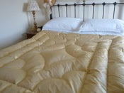 Image of Stunning Double Smooth Soft Gold Silk Eiderdown