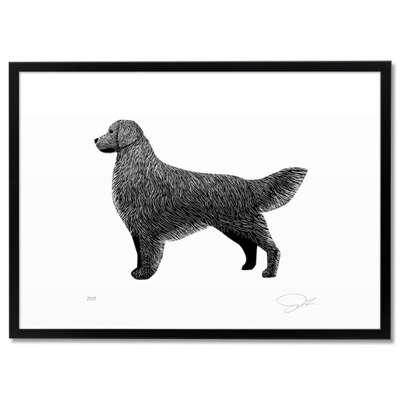 Image of Print: Golden Retriever