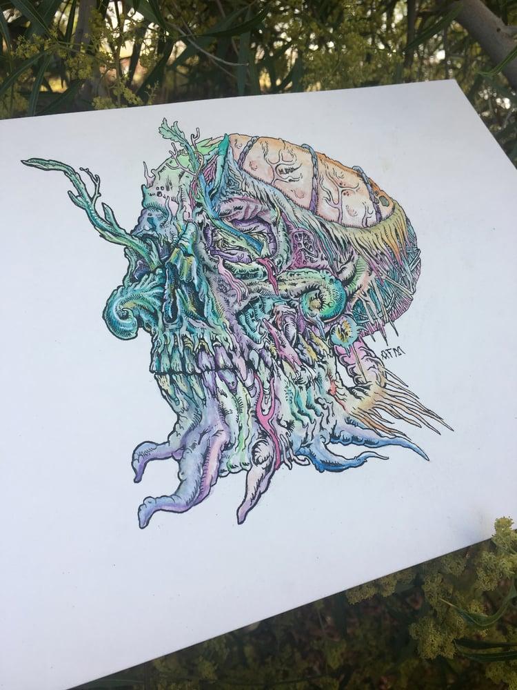 "Image of Original ""Floristics"" Illustration"