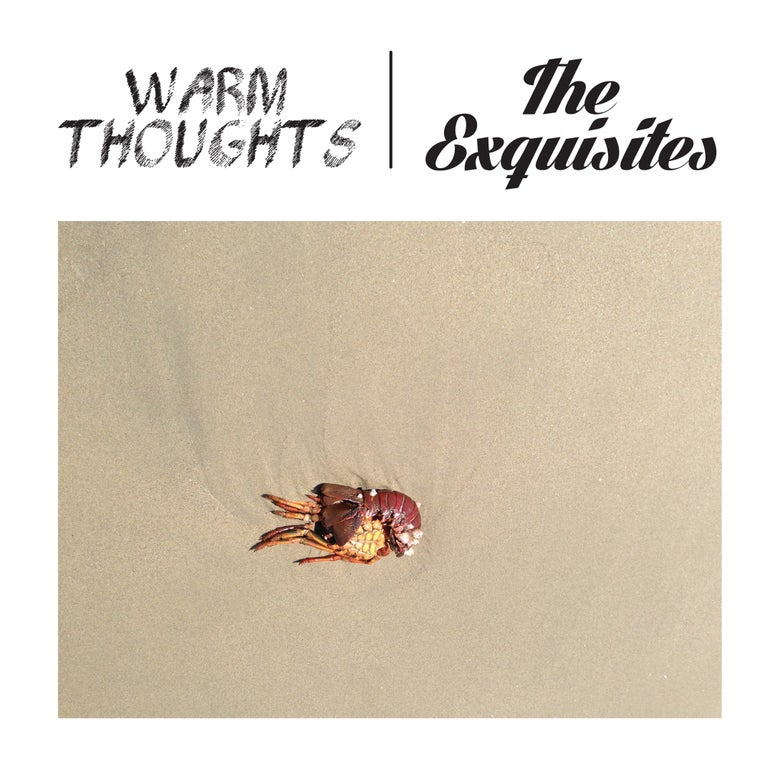 Image of Warm Thoughts/Exquisites Split 7""