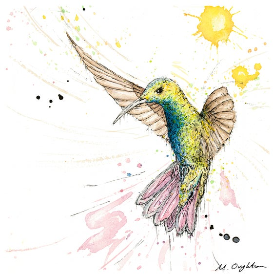 Image of Flight of a Humming bird No.1 - Print