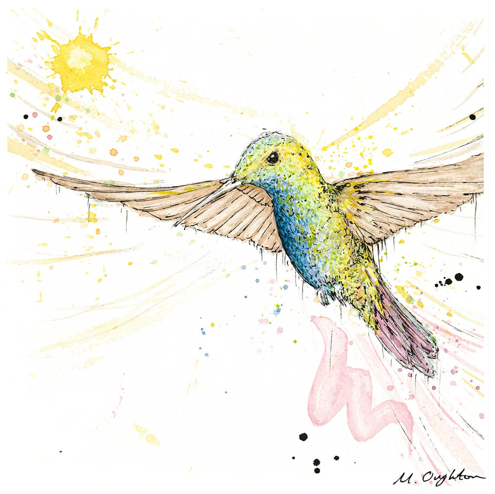 Image of Flight of a Humming bird No.3 - Print