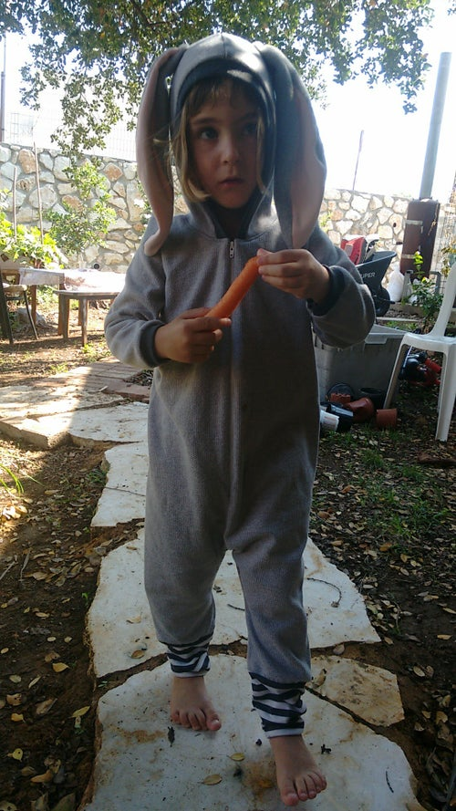 Image of Gray bunny cotton play suit אוברול ארנב אפור