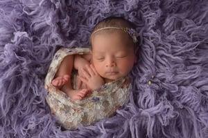 Image of 2018 Newborn Session~ On Sale