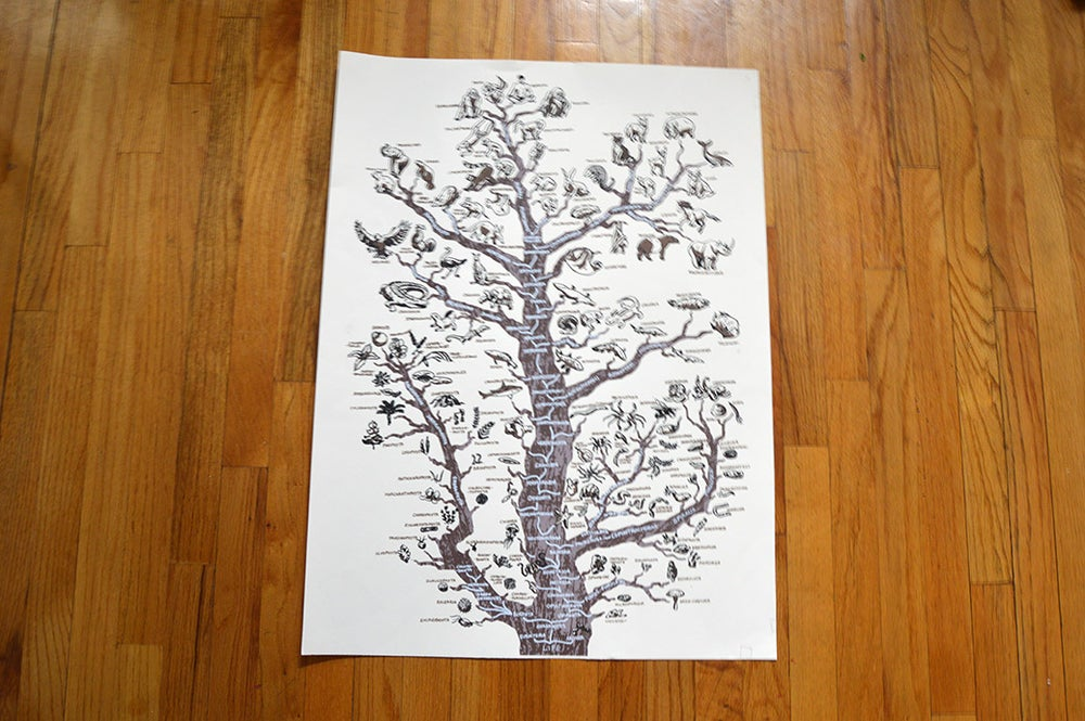 Image of Tree of life print
