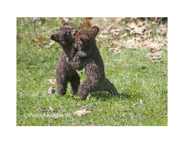 Image of Cubs 9292