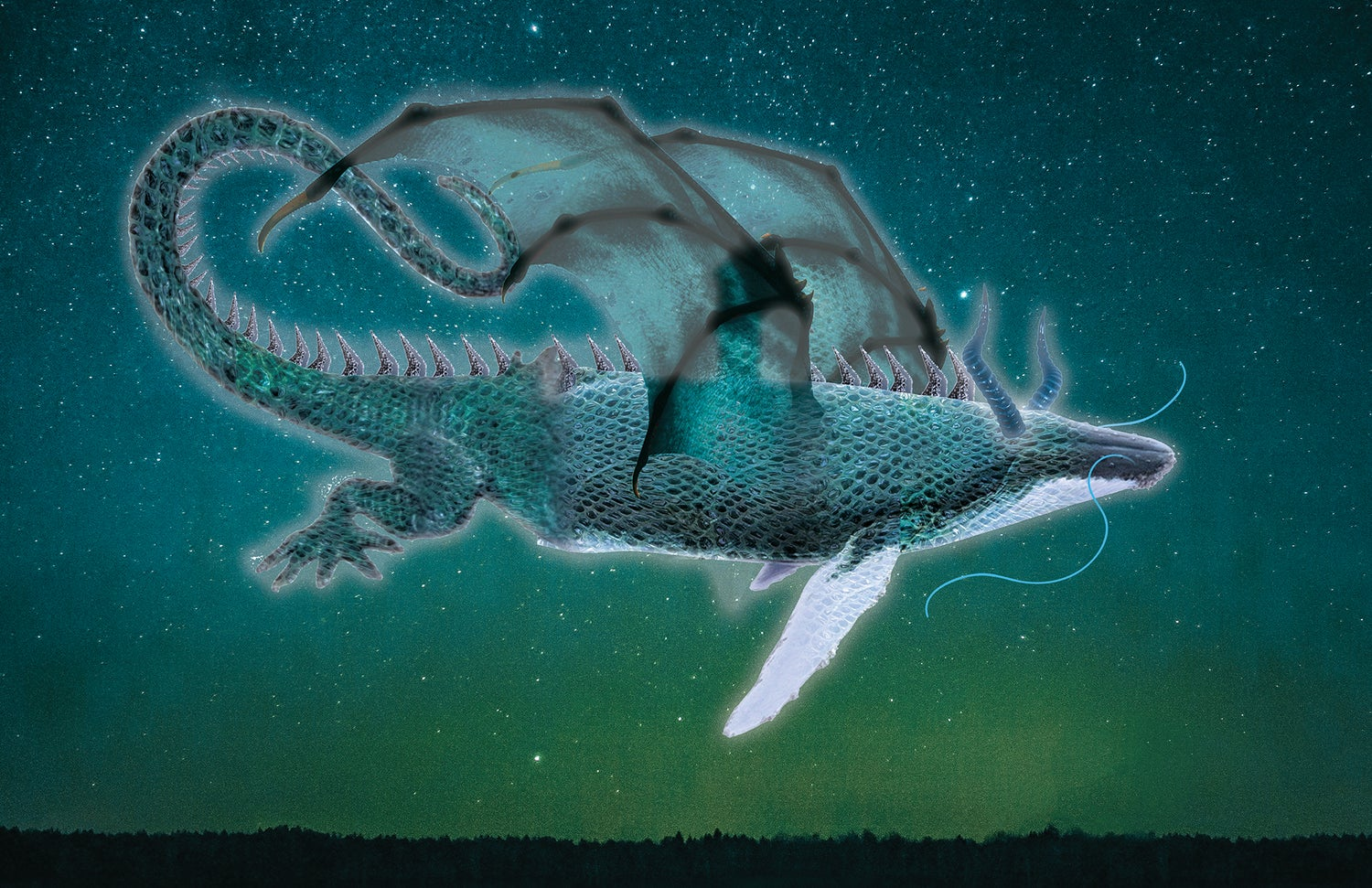 Image of Whale Dragon