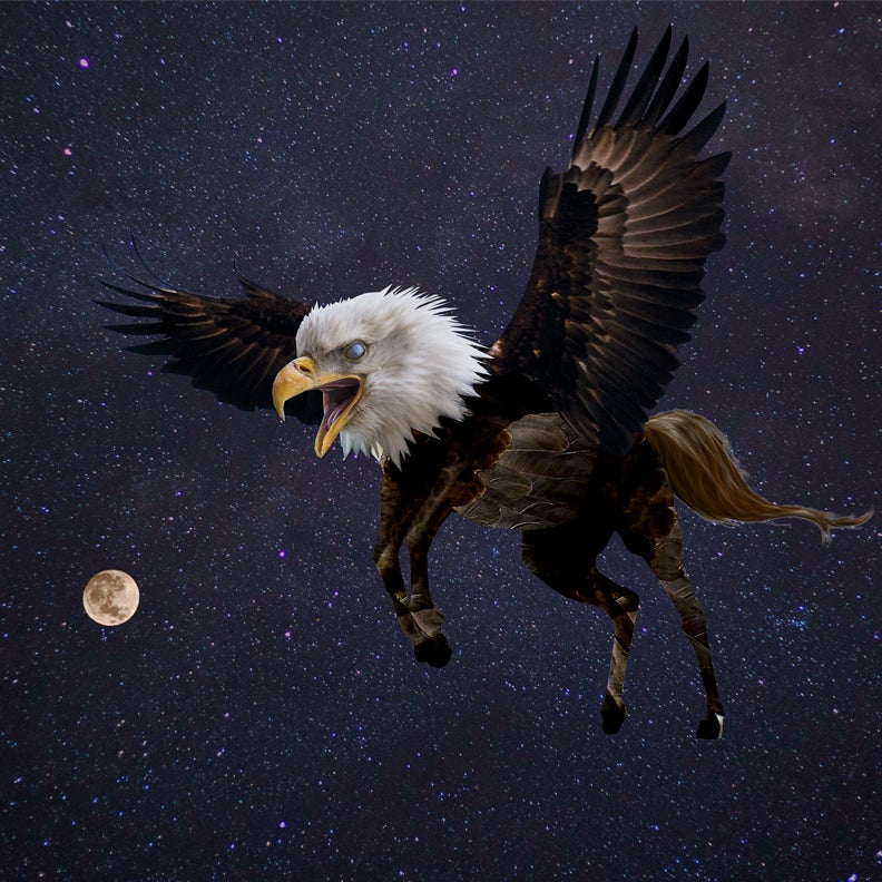 Image of Eagle Beast