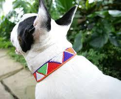 Image of Maasai -beaded Dog collar