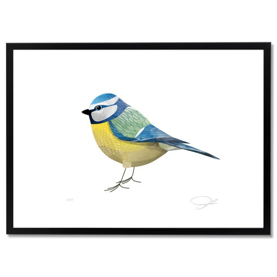Image of Print: Blue Tit