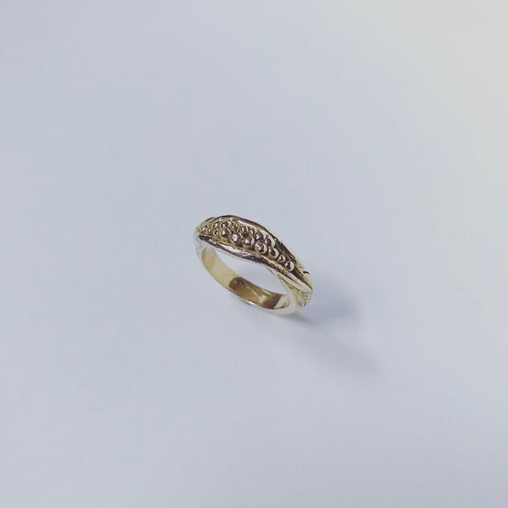 Image of Seed Pod Ring