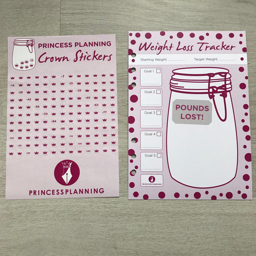 Image of GRANDE PLANNER WEIGHT LOSS JAR INSERT WITH STICKERS