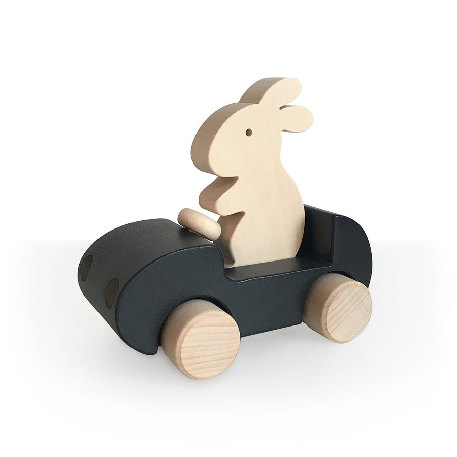 Image of Bunny Car Noir
