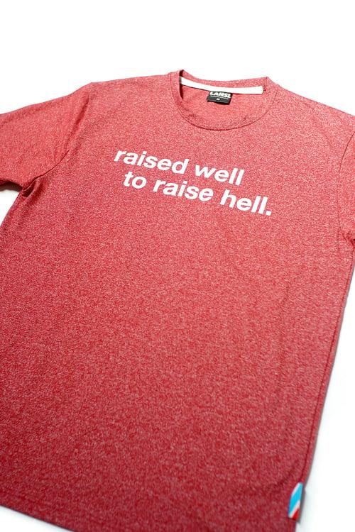 "Image of LANSI ""Hellraiser"" T-shirt (Melange Red)"
