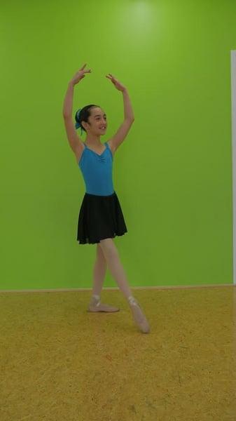 Image of Ballet Skirt