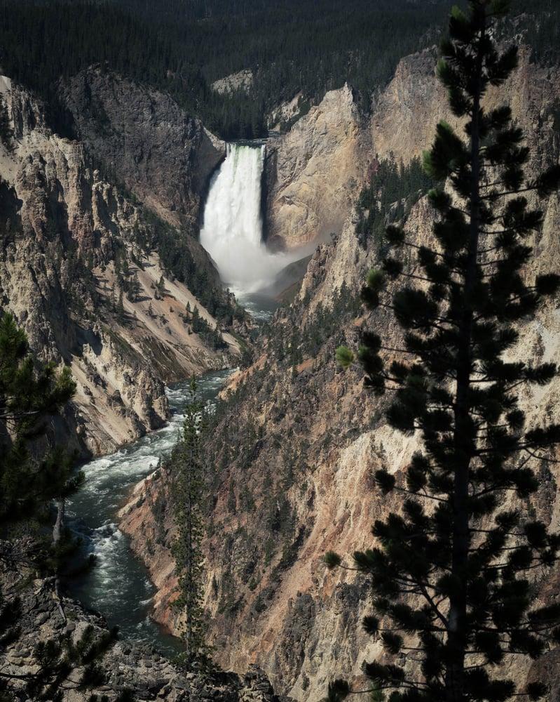 Image of Yellowstone Falls