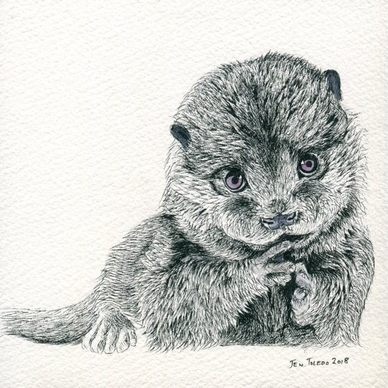 Image of Otter Pup Print