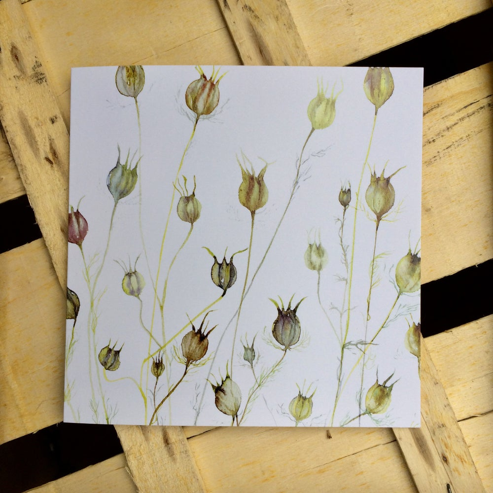Image of Nigella greetings card