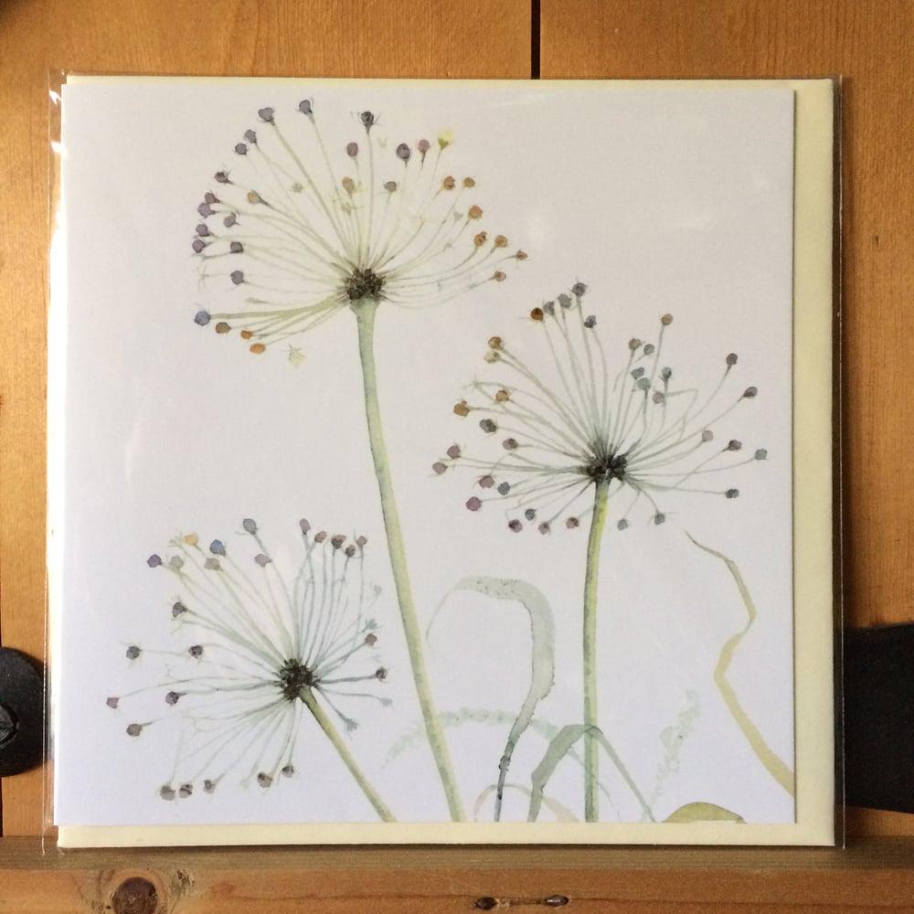 Image of Three Allium Greetings Card