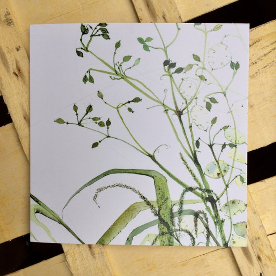 Image of Hypericum Greetings Card