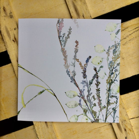 Image of Honesty and Grasses Greetings Card